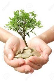 お金の木の成長 の写真素材・画像素材 Image 10762040.