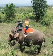 タイ旅行2019⑩人生初のゾウ乗り!   元国際線CAえなの新米ママLife