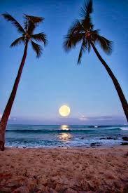 無料】ハワイから波動アップのスーパームーン満月レムリアンヒーリング ...