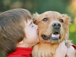 """ペットが子供に与える影響は? 世話はどうする? 犬や猫を飼う""""3つの ..."""