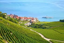 絶景が広がる葡萄畑!世界遺産スイス・ラヴォー地区の歴史と希少ワイン ...