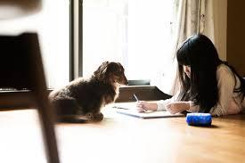 家族がイライラ。でも外に出られない」 休校でストレス・孤独、子ども ...