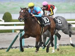 フォーチュンC】(阪神10R) ヒンドゥタイムズが人気に応える | 競馬 ...