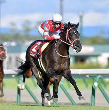 コントレイル、無敗三冠達成へ順調 2日から調教再開、馬体も回復 ...