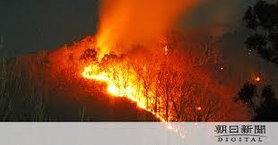 足利市で山火事 丸1日燃え続ける:朝日新聞デジタルの画像