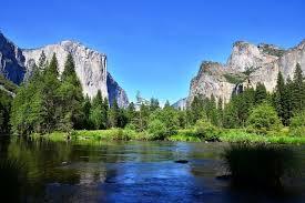 サンフランシスコ:予約   ヨセミテ国立公園1日観光 [日本語ガイド付き]