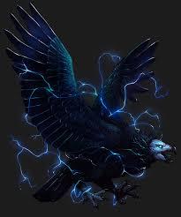 🥇神話の鳥