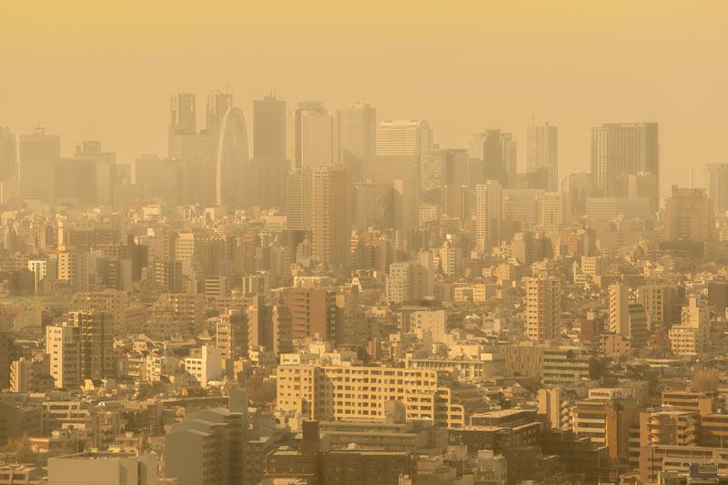 黄砂などで「花粉爆発」 喘息など重症化も - ウェザーニュース