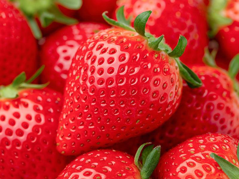 風邪、老化、動脈硬化、がんの予防に、イチゴが力を発揮する ...