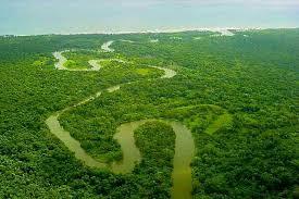 リオ・プラタノ生物圏保護区 | 世界遺産プラス | 世界遺産をもっと ...