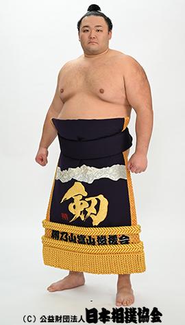朝乃山 英樹 - 力士プロフィール - 日本相撲協会公式サイト