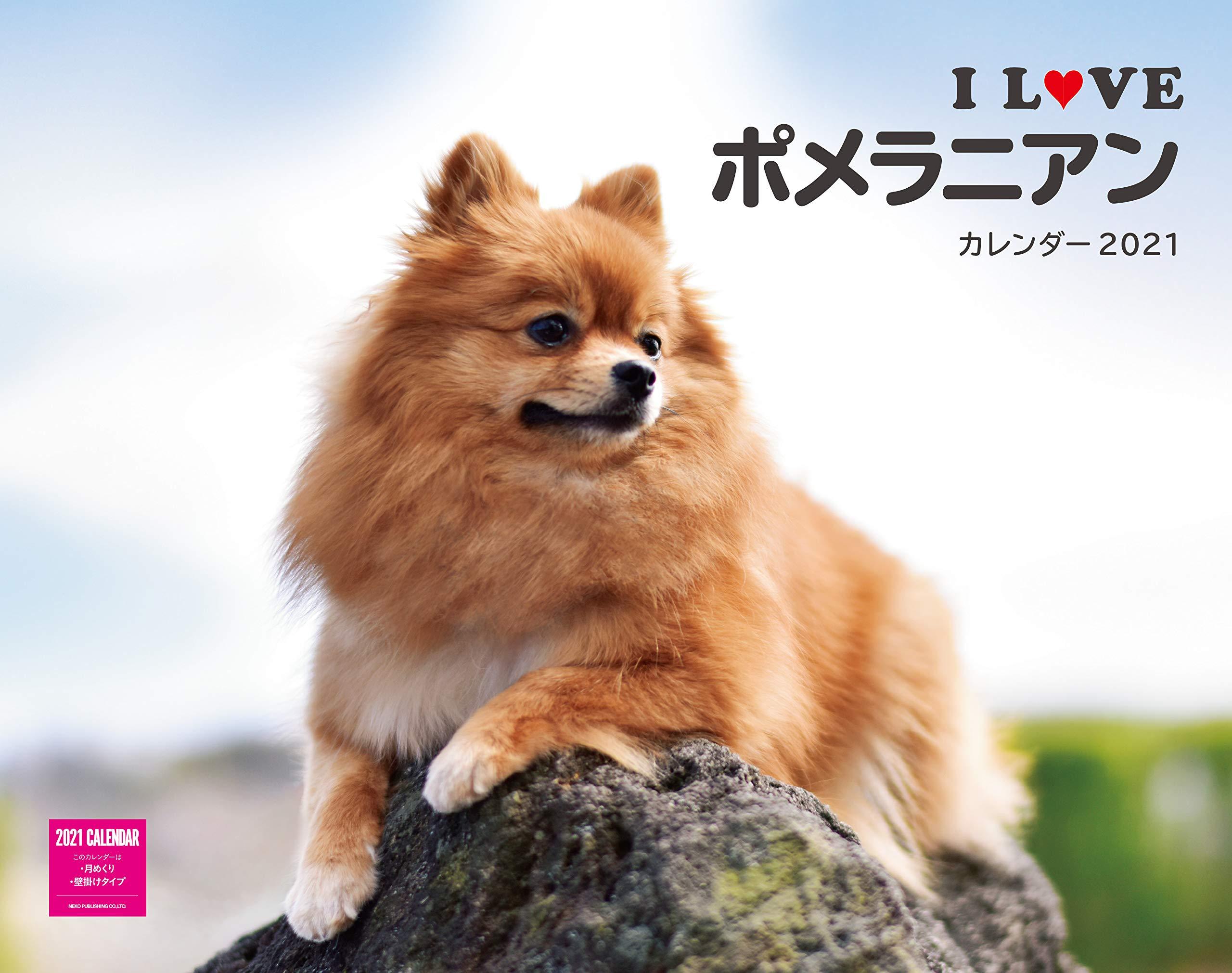 カレンダー2021壁掛け I LOVE ポメラニアンカレンダー 2021(ネコ ...