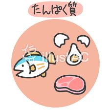 タンパク質のイラストイラスト - No: 1551766/無料イラストなら ...