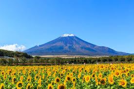 富士山と湖の絶景!富士五湖のフォトスポット5選! | RETRIP[リトリップ]