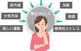 酸化ストレスとは   ユーグレナ・マイヘルス