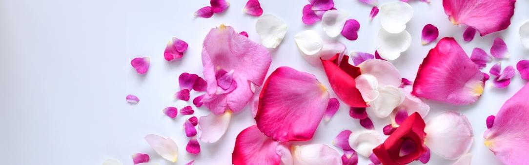 料理や化粧水に使えるバラの花びら活用法   kimirin 暮らしの手作り