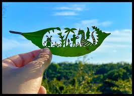 葉っぱ切り絵が生む感動 就職でわかった発達障害、見つけた創作の道