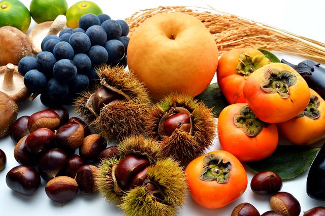 秋の旬の食材の栄養補給のポイントとアレンジレシピ!
