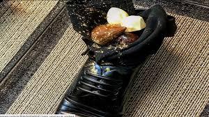 イスラエル、安部首相に出した「靴のデザート」で物議 - Pars Today