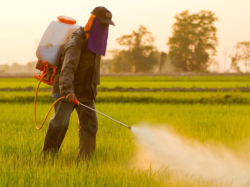 使用方法によっては危険! 「農薬事故」を防ぐには? | AGRI JOURNAL