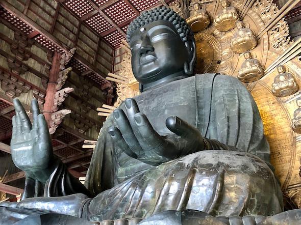 """奈良の大仏""""をリモート参拝 ニコ生で5月末まで中継 - ITmedia NEWS"""