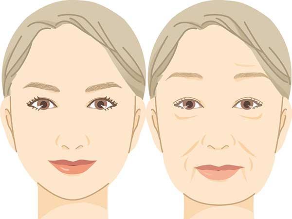 首しわを消したい人が使うべき、首ケア専用コスメと枕 | ハルメク美と健康