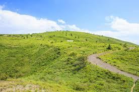 鉢伏山|山頂まで最短15分!天空の散歩道を楽しむ登山コース|YAMA HACK