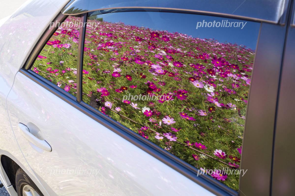古い車の窓 写真素材 [ 3549860 ] - フォトライブラリー photolibrary