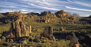 南アフリカ世界遺産「ケープ植物区保護地域群」の見どころ特集 ...