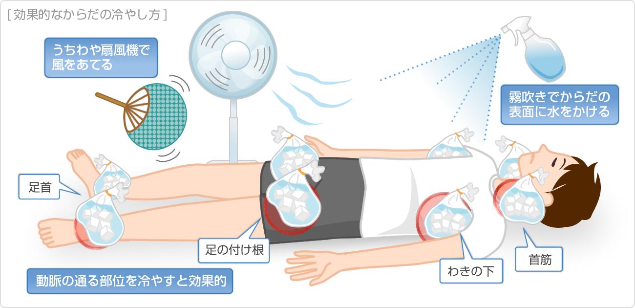 熱中症の対策|くすりと健康の情報局