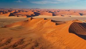ナミブ砂漠|アフリカ 世界遺産|阪急交通社