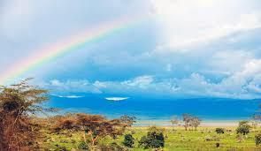 ンゴロンゴロ自然保護区|アフリカ 世界遺産|阪急交通社