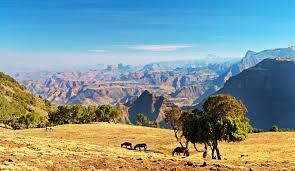 シミエン国立公園 アフリカ 世界遺産 阪急交通社