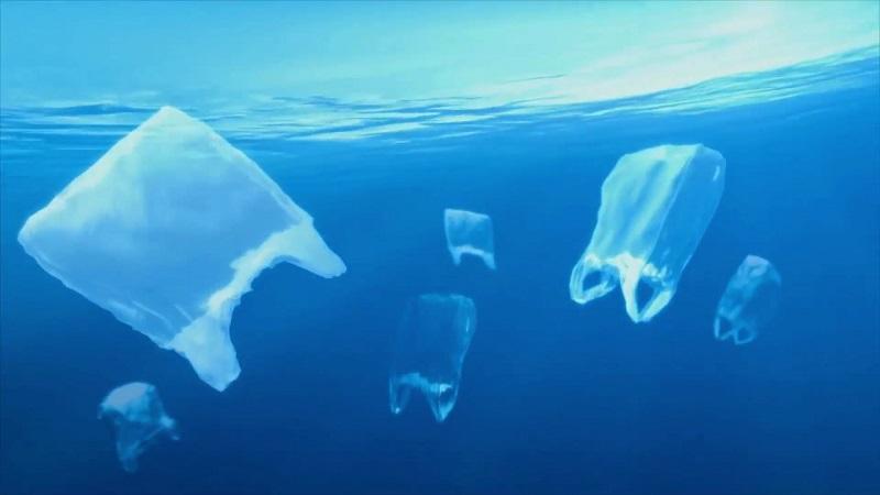 映画『プラスチックの海』11/13より上映開始|ニュース・トピックス ...
