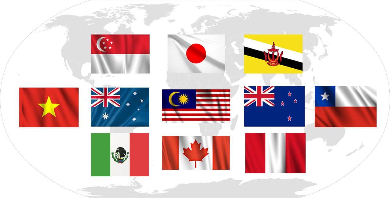 TPP11(CPTPP)の基礎知識 | 海外進出する日本企業のメリットも解説 ...