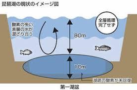 2年連続だ。 「琵琶湖の深呼吸:全層循環、今年も確認されず」 - バス ...
