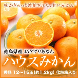 ハウスみかん 徳島県産 JAアグリあなん 赤秀 12〜15玉 約1.2kg 化粧 ...
