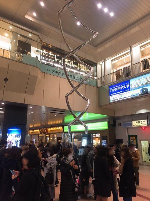 """大宮駅のシンボル「まめの木」には""""正式名称""""があるって知ってた ..."""