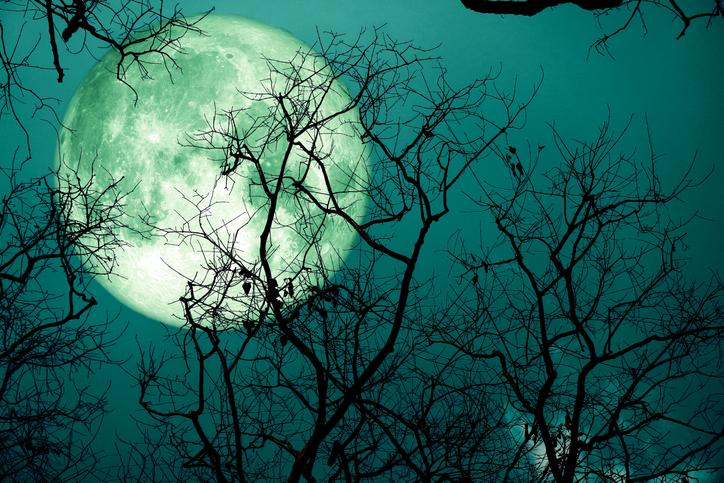 8月の満月はスタージェンムーン。8月4日に日付が変わったら次の ...