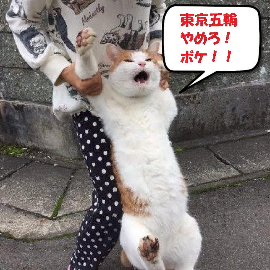 東京オリンピックを開催しようとしてるの、マジかよ、、、 : 美和のブログ