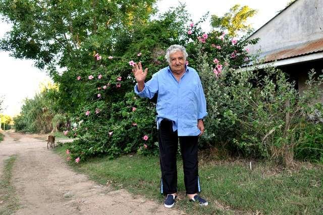 世界一貧しい大統領と呼ばれた男 ムヒカさんの幸福論 | ムヒカ, モンテ ...