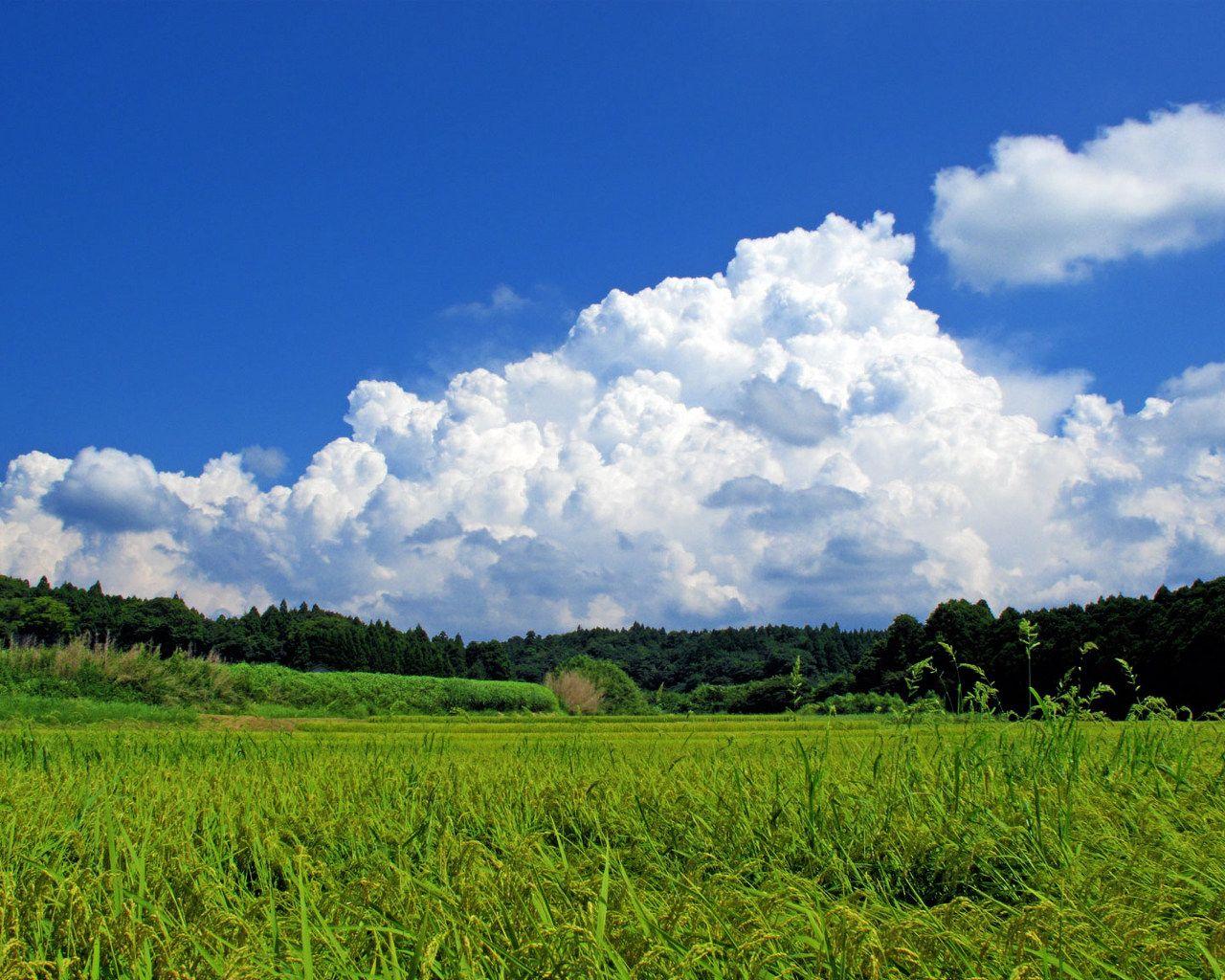 日本の風景「夏の志賀町田園風景1」壁紙1280x1024 - 壁紙館 | 風景 ...