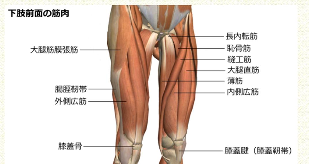 肘以上にしんどい膝   BAD NET