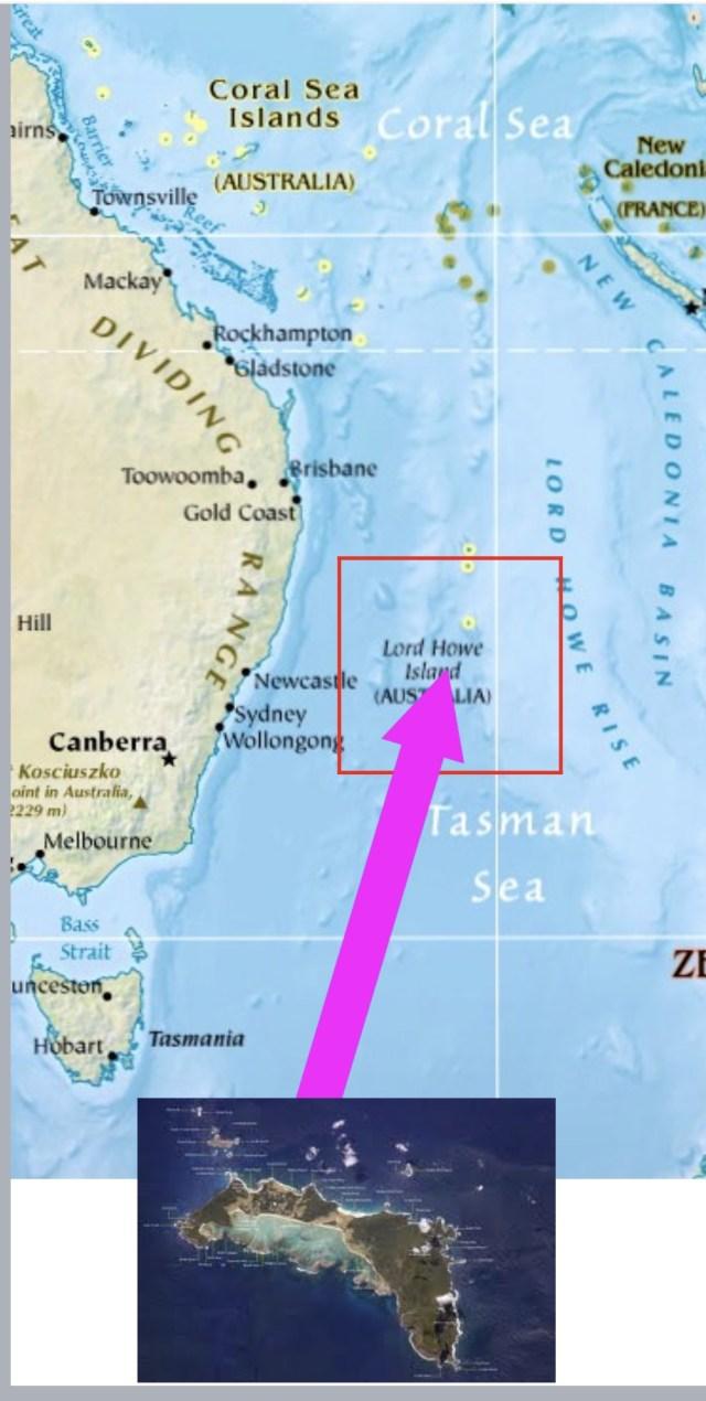 世界で一番高い飛行機で行くオーストラリア沖の孤島 ロードハウと ...