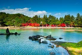 平泉が誇る名刹の庭園はこの世に降臨した仏の国   今日の絶景