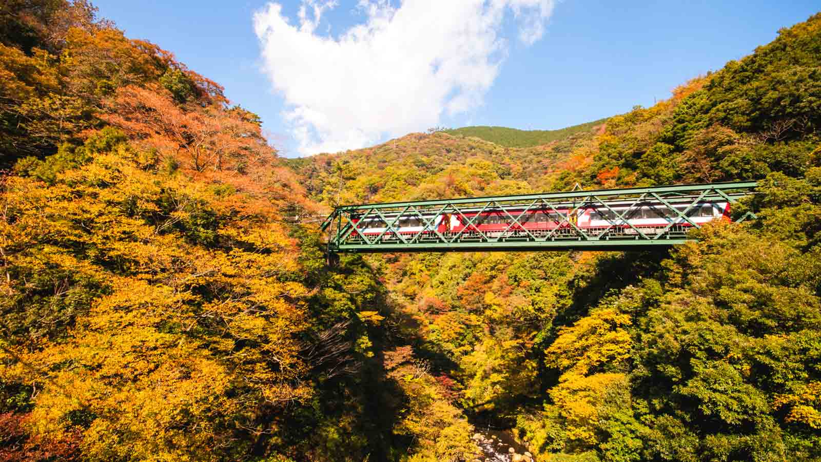 Autumn Colors in Hakone: 7 Places to Admire Fall in all its Glory