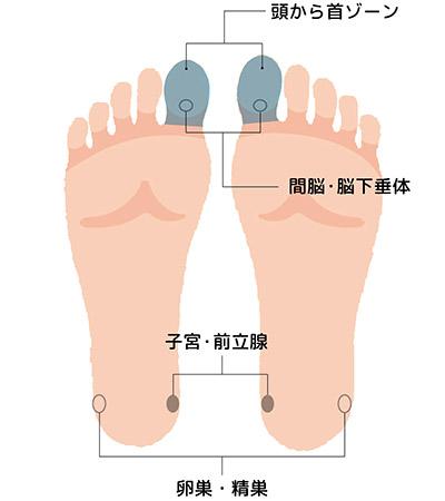"""症状別】足裏マッサージのやり方 不調や痛みを改善する""""痛くない""""足裏 ..."""