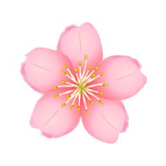 まとめ】桜の無料イラスト素材集|イラストイメージ