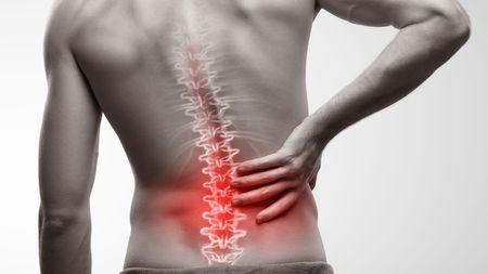 長引く腰痛は「脳の働き低下」という科学的研究 ストレスやうつ、不安が ...