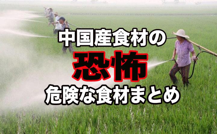 中国産食品のヤバすぎる実態!【危険な中国食材とその見分け方 ...